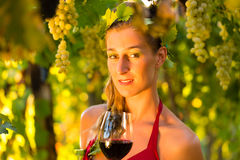 Woman with glass of wine in vineyard Royalty Free Stock Photos
