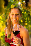 Woman with glass of wine in vineyard. Woman with glass of wine in the vineyard with sunshine, she is the wine queen Stock Photo