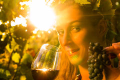 Woman with glass of wine in vineyard Stock Image