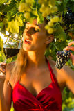 Woman with glass of wine in vineyard Stock Photography