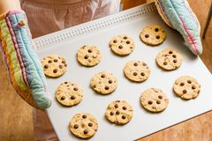 Woman with gloves holding a baked cookies tray Stock Photos