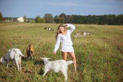 Woman and goats in the field. Royalty Free Stock Photos