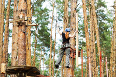 The woman goes in for mountaineering on high trees. Woman - athlete goes in for mountaineering on high trees stock image