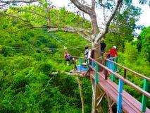 Woman going on a jungle zipline adventure Royalty Free Stock Photos