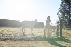 Woman in golden dress next to white horse stock photos
