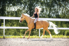 Woman and golden horse Stock Photos