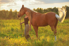 Woman and golden horse Stock Photo