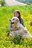 Woman and golden retriever in a field of yellow flowers. Royalty Free Stock Photo