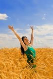 Woman in golden wheat Royalty Free Stock Photo