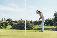 Woman golf player concentrating. Royalty Free Stock Images