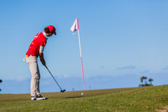 Woman Golf Putt Flag royalty free stock photos