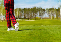 Woman golfer, back view Royalty Free Stock Images