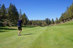 Woman golfer hitting from the fairway. Eagle Crest Resort Golf Course,Central Oregon Royalty Free Stock Image