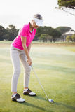 Woman golfer preparing her shot Royalty Free Stock Photography