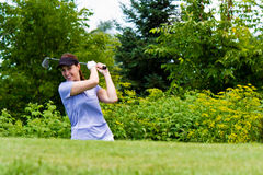 Woman golfer swining her club on the fairway Royalty Free Stock Image