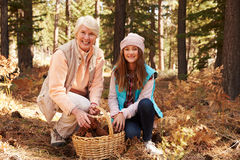 Woman and granddaughter with basket in forest, portrait Royalty Free Stock Images