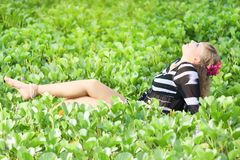 Woman in grass Royalty Free Stock Image