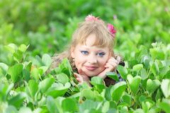 Woman in grass Stock Photos