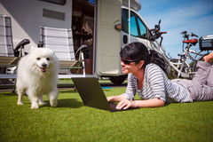 Woman on the grass with a dog looking at a laptop Royalty Free Stock Photo