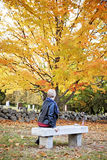 Woman at grave in cemetery. A back view of an elderly woman sitting on a bench in a cemetery in Autumn royalty free stock image