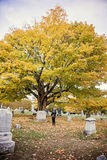 Woman at grave in cemetery. A side view of an elderly woman standing at a headstone in a cemetery in Autumn stock photos