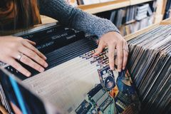 Woman in Gray Knit Sweater Holding Vinyl Records Royalty Free Stock Images