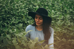 Woman in Gray Long Sleeve Shirt Standing in the Middle on Green Leafy Plant during Daytime Stock Photo