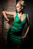 Woman in green dress. Elegant fashionable woman in green dress Stock Photography