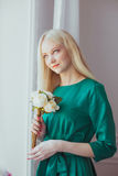 Woman in a green dress Stock Photography