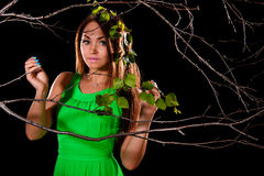 Woman in a green dress between dry branches Stock Photography