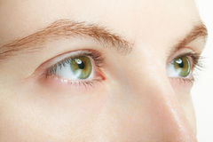 Woman green eyes macro, vision concept Royalty Free Stock Photos