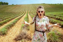 Woman at green field missed flowering of lavender. Dissatisfied trendy woman at green field in Provence, France missed the flowering of lavender. bad planning stock images