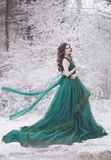 Woman in a green lush dress in the winter forest in wind. Fairy tale girl over winter landscape. Beautiful long-haired girl in a magnificent emerald fairy dress royalty free stock image