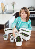Woman in green watering seedlings Stock Photography