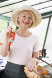 Woman in greenhouse holding cherry tomatoes Royalty Free Stock Images