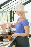 Woman in greenhouse putting soil in pot Royalty Free Stock Photography