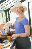 Woman in greenhouse putting soil in pot Stock Photography