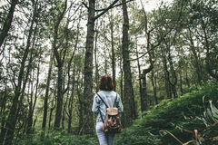 Woman in Grey Denim Jacket Walking Around Green Tree during Daytime Stock Photography