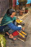 Woman grilled corns, India Stock Image