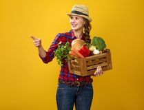 Woman grower with box of fresh vegetables pointing at something. Healthy food to your table. Portrait of smiling young woman grower in checkered shirt isolated royalty free stock image