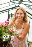 Woman Growing Plants In Greenhouse Royalty Free Stock Photo
