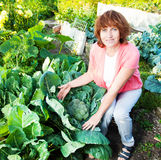 Woman grows harvest in the garden Royalty Free Stock Images