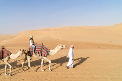 Woman on guided camel. In desert of Abu Dhabi, U.A.E Stock Photography