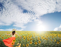 Woman and guitar standing in sunflower fields with blue sky Stock Photo