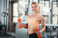 Woman in the gym with barbell Royalty Free Stock Photo