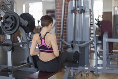 Woman in gym doing strength training on the simulator. The woman in gym doing strength training on the simulator Stock Photos