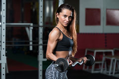 Woman In The Gym Exercising Biceps With Barbell Royalty Free Stock Photo