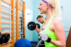Woman in gym training - dumb bells Royalty Free Stock Photography