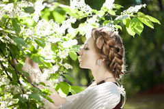 Woman with a hair braid in a blossoming park. Stock Photos