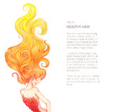 Woman hair curles on white. Vector illustration of hand drawn woman with fire hairs - rich curled locks hairdress drawn in color pencils isolated on white with Stock Photos